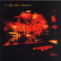Cinematic Orchestra - Every Day (CD)