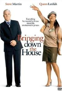 Bringing Down The House (DVD) - Cover