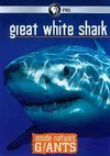 Inside Nature's Giants: Great White Shark (Region 1 DVD)