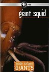Inside Nature's Giants: Giant Squid (Region 1 DVD)