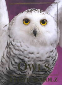 Owls - Floyd Scholz (Hardcover) - Cover