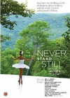 Never Stand Still: Dancing At Jacob's Pillow (Region 1 DVD)