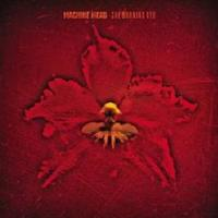 Machine Head - The Burning Red (CD) - Cover