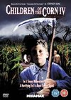 Children of the Corn 4 - The Gathering (DVD)