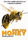 More Than Honey (DVD)
