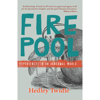 Fire Pool - Hedley Twidle (Paperback)