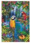 Educa - Bird Tropical Land Puzzle (500 Pieces) Cover