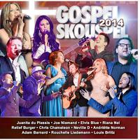 Various Artists - Gospel Skouspel 2014 (CD)