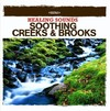 Nature Sounds - Healing Sounds - Soothing Creeks & Brooks (CD)