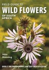 Field Guide to Wild Flowers of South Africa - John Manning (Paperback)