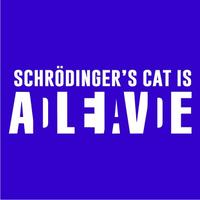 Schrodinger's Cat Womens T-Shirt Royal Blue (X-Large)