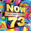 Various Artists - Now That's What I Call Music! Vol 73 (CD)