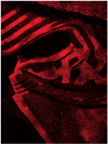 Star Wars: Episode VII - Kylo Ren Mask Canvas (80x60cm)