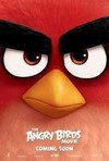 Angry Birds Movie (Region A Blu-ray)