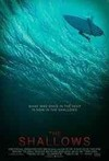 Shallows (Region 1 DVD)