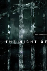 The Night of - Season 1 (DVD)