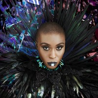 Laura Mvula - The Dreaming Room (Vinyl) - Cover