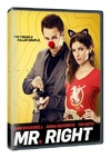 Mr Right (DVD)