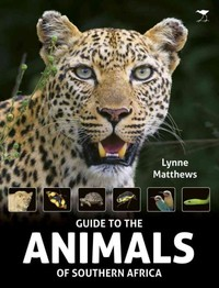 Guide to the Animals of Southern Africa - Lynne Matthews (Paperback) - Cover