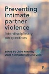 Preventing Intimate Partner Violence - Claire M. Renzetti (Hardcover)