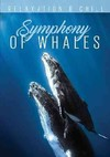 Relax: Symphony of Whales (Region 1 DVD)