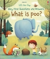 Lift-the-Flap Very First Questions & Answers - Katie Daynes (Board book)