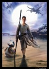 Fantasy Flight Games - Star Wars Art Card Sleeves: Rey (50 sleeves)