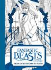 Fantastic Beasts and Where to Find Them: a Book of 20 Postcards to Colour (Paperback)