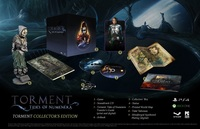 Torment: Tides of Numenera (PC) - Cover