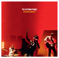 Last Shadow Puppets - Dream Synopsis (Vinyl) - Cover