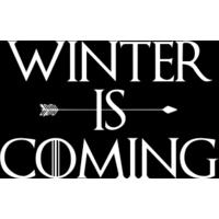 Winter Is Coming Men's T-Shirt - Black (Small)