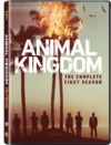 Animal Kingdom - Season 1 (DVD)
