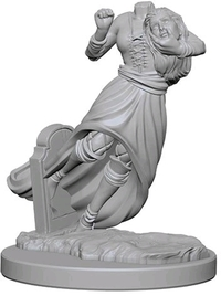 Dungeons & Dragons - Nolzur's Marvelous Unpainted Minis: Ghosts - Cover