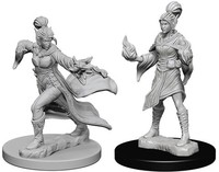 Pathfinder Battles: Deep Cuts Unpainted Miniatures - Elf Female Sorcerers - Cover