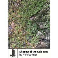 Shadow of the Colossus - Nick Suttner (Paperback)