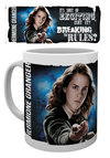 Harry Potter - Dynamic Hermione Mug Cover