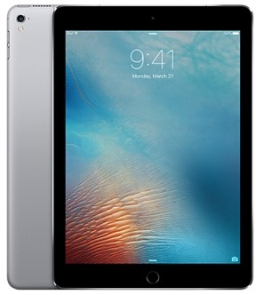 Apple iPad Pro 12 9 inch 256GB -WiFi + Cellular - Space Grey (Special Order  only)