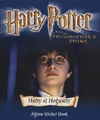Harry Potter At Hogwarts Jigsaw Sticker (Paperback) Cover