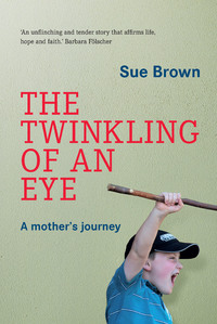 Twinkling of an Eye - Sue Brown (Paperback) - Cover