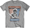 Jimi Hendrix - Electric Ladyland Mens Grey T-Shirt (Small)