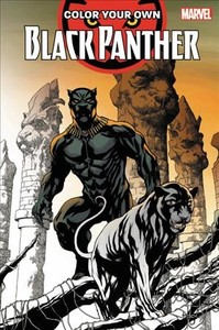 Color Your Own Black Panther - Brian Stelfreeze (Paperback) - Cover