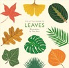 Little Guide to Leaves - Tom Frost (Hardcover)
