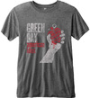 Green Day - American Idiot Vintage Men Charcoal Burnout T-Shirt (Small)