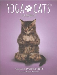 Yoga Cats Deck and Book Set - Alison Denicola (Cards) - Cover
