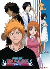Bleach - Casual Friends Group Wall Scroll