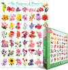 Eurographics - The Language of Flowers Puzzle (1000 Pieces) Cover