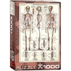 Eurographics Puzzle 1000 Pieces - The Skeletal System