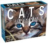 Cats 2019 Mini Day-to-Day Calendar - Andrews Mcmeel Publishing (Calendar)