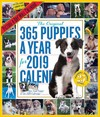 2019 365 Puppies a Year Picture-a-Day Wall Calendar - Workman Publishing (Calendar)