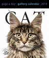 2019 Cat Gallery Page-a-Day Gallery Calendar - Workman Publishing (Calendar)